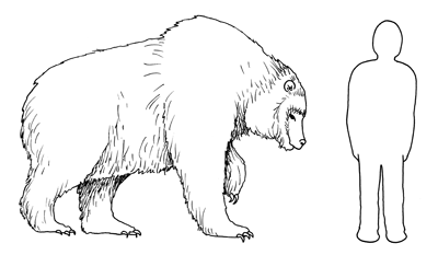 Figure 3.10: Reconstruction of the giant short-faced bear <em class='sp'>Arctodus</em>, compared to a six-foot human.
