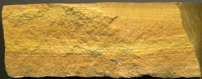Figure 2.27: Volcanic ashfall tuff from the Eocene, Green River Formation, Wyoming.