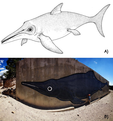 Figure 3.7: Ichthyosaurs. A) A typical ichthyosaur, as it might have looked in life. B) <em class='sp'>Shonisaurus</em>, the largest known ichthyosaur, from the Triassic of Nevada. Painting at Ichthyosaur State Park, Nevada.