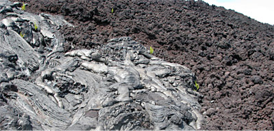 Figure 2.37: Juxtaposition of pahoehoe (left) and 'a'a flows (right).