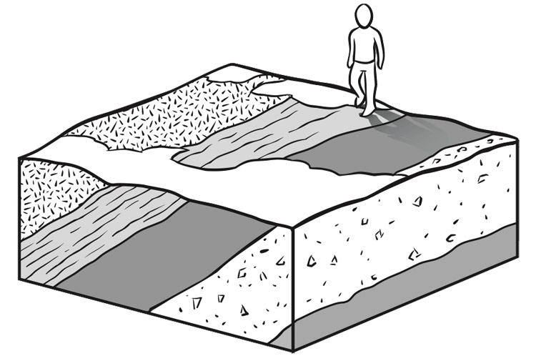 When rocks are folded or tilted, the person walking across the surface sees several layers of rock exposed.