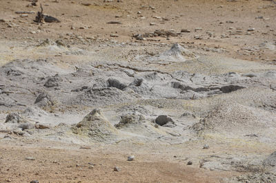 Figure 2.34: Mudpots in the Pocket Basin, Yellowstone National Park. The mud is composed of hot water mixed with volcanic clay.