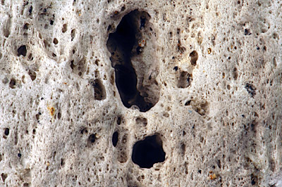 Figure 5.9: A close-up of a pumice stone, revealing its highly porous and vesicular texture. These gas bubbles make the rock so lightweight that it is able to float. Field of view is 2.7 centimeters (1 inch) across.