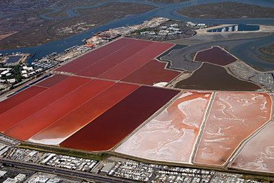 Figure 5.11: Salt evaporation ponds on the western shore of San Francisco Bay. Different microorganisms thrive in varying levels of salinity, causing the ponds to change in color. Low-salinity ponds are inhabited by blue-green algae, while saltier waters support orange brine shrimp and red bacteria.