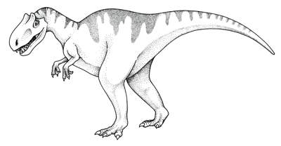 Figure 3.44: The carnivorous theropod <em class='sp'>Saurophaganax</em> (restoration) reached a height of 5 meters (17 feet).