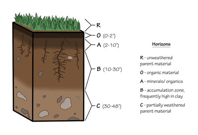 Figure 8.2: Typical soil profile.